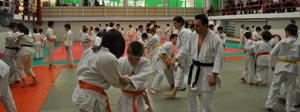 Asd Judo Club Ronin